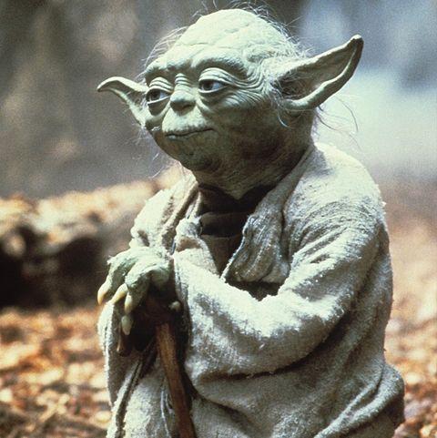 baby-yoda-old-yoda-1574103229